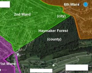 haymaker forest and wards labeled (3)